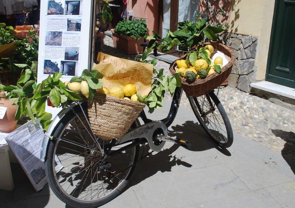 Sardinië citroenen in fietsmand