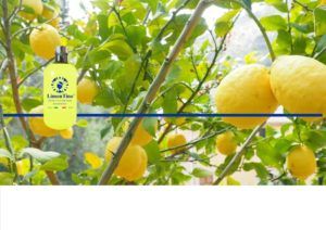 Limontino Limoncello Sardinia Products