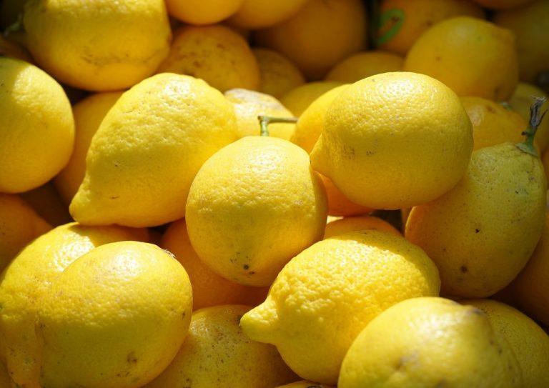 citroenen voor Limontino